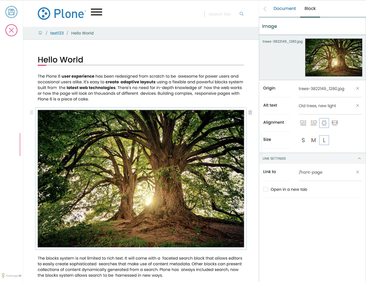 plone6editor.png